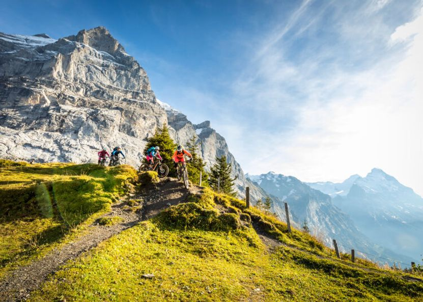 Mountainbikers kurz nach Grosse Scheidegg